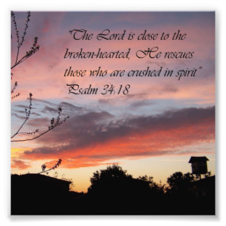 courtesy:http://www.zazzle.es/biblia+fotografia